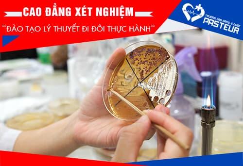 Cao-dang-xet-nghiem-dao-tao-ly-thuyet-di-doi-thuc-hanh